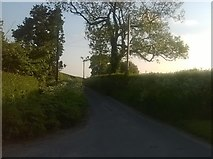 SJ6744 : Monk's Lane, heading for Audlem by Christopher Hilton