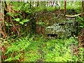 NZ5913 : Mystery Ruin by Mick Garratt