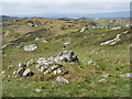 NG2394 : Rocky grassland at Ceann a Bhàigh by M J Richardson