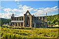SO5300 : Tintern Abbey : Week 25