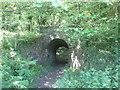 TA0097 : Bridleway passing under the disused railway near Hayburn Wyke by John Slater