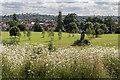 TQ3092 : Wildflower Meadow, Broomfield Park, London N13 : Week 26
