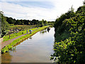 SJ4171 : Shropshire Union Canal, looking South from Caughall Bridge by David Dixon