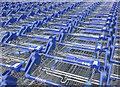 J1244 : Shopping trolleys, Banbridge : Week 27