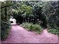 SZ0794 : Talbot Village: footpath N16 joins footpath N15 by Chris Downer