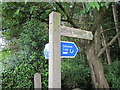 SJ5466 : Delamere Loop Signpost by Jeff Buck