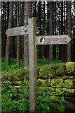 SE0104 : Signpost near Binn Green by Stephen McKay