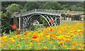 SJ6703 : The Iron Bridge at Ironbridge by steven ruffles