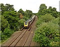 ST0206 : A CrossCountry train approaches Cullompton by Roger Cornfoot