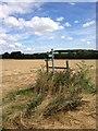 TL0554 : Towards Ravensden Brook by Dave Thompson
