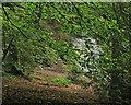 SJ6676 : Forge Brook by Peter Turner