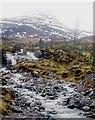 NN4484 : Allt Coire Choille-rais by Alan Reid
