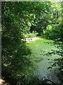 TQ1823 : Pond near Site of Sunt Farm by Simon Carey