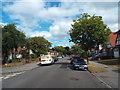 TQ3664 : Palace View, Shirley by Malc McDonald