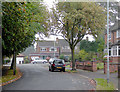 SO8895 : Springhill Avenue in Spring Hill, Wolverhampton by Roger  Kidd
