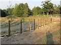 SU4986 : Fence in a fence by Bill Nicholls