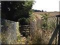 TR3448 : Hangman's Lane railway crossing: east side ramp by Hugh Craddock