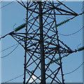 SJ5687 : Birds among the pylons, Penketh : Week 37