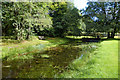 NX9666 : The Old Curling Pond by Mary and Angus Hogg
