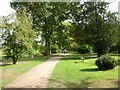 SO8844 : Home Shrubbery, Croome Park by Philip Halling