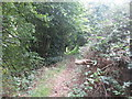 SE3901 : Footpath towards the railway tunnel at Hemingfield by John Slater