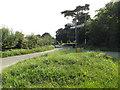 TM1389 : Church Road, Tibenham by Adrian Cable