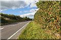 SJ5462 : The A49 near Tarporley by David P Howard