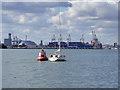 SU4209 : Gymp buoy by Robin Webster