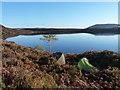 SH8437 : Morning at camp below Twr yr Eryr : Week 40