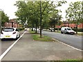 SJ8644 : Stoke-on-Trent: Harpfield Road by Jonathan Hutchins