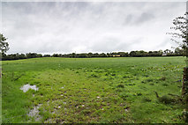 R5505 : Field west of minor lane by David P Howard