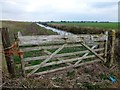 TL4177 : Gate on the washland - The Ouse Washes by Richard Humphrey