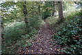 SE1327 : Calderdale Way in North Wood by Ian S