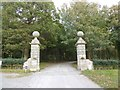 SX5255 : Gateway into The Belt, woodland area in Saltram Park by David Smith