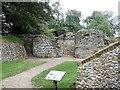 TF9821 : North Elmham Chapel [2] by Michael Dibb