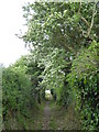 SW8734 : Footpath next to Treloan Farm by Rod Allday