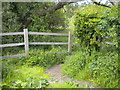 SO8698 : Footpath off Staffordshire & Worcestershire Canal, Castlecroft by Richard Vince