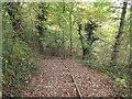 NZ3355 : Steps on the Weardale Way near Washington by Malc McDonald