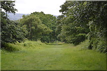 TQ5245 : Footpath, Penshurst Park by N Chadwick