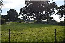 TQ3226 : Pasture land by N Chadwick