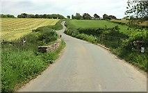 SS2202 : NCN3 south of Marhamchurch by Derek Harper