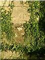 SK8331 : Bench mark, St Michael's Church, Harston by Alan Murray-Rust