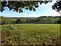 SO6050 : Farmland near Stoke Lacy by Philip Halling