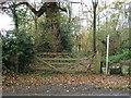 SJ4461 : Bridleway off Chapel Lane, Saighton by JThomas