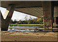 TL4861 : The A14 bridge, the Cam, a jogger and a fished-up bike by John Sutton