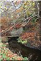 NT0868 : Canal Feeder by Anne Burgess