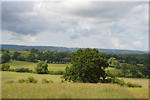 TQ5144 : View from the Eden Valley Walk by N Chadwick
