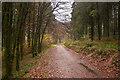 SX0570 : Camel Trail by Guy Wareham