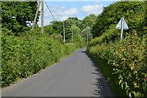 TQ4945 : Chiddingstone Rd by N Chadwick