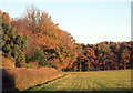 SU8085 : Corner of Widefield Wood by Des Blenkinsopp